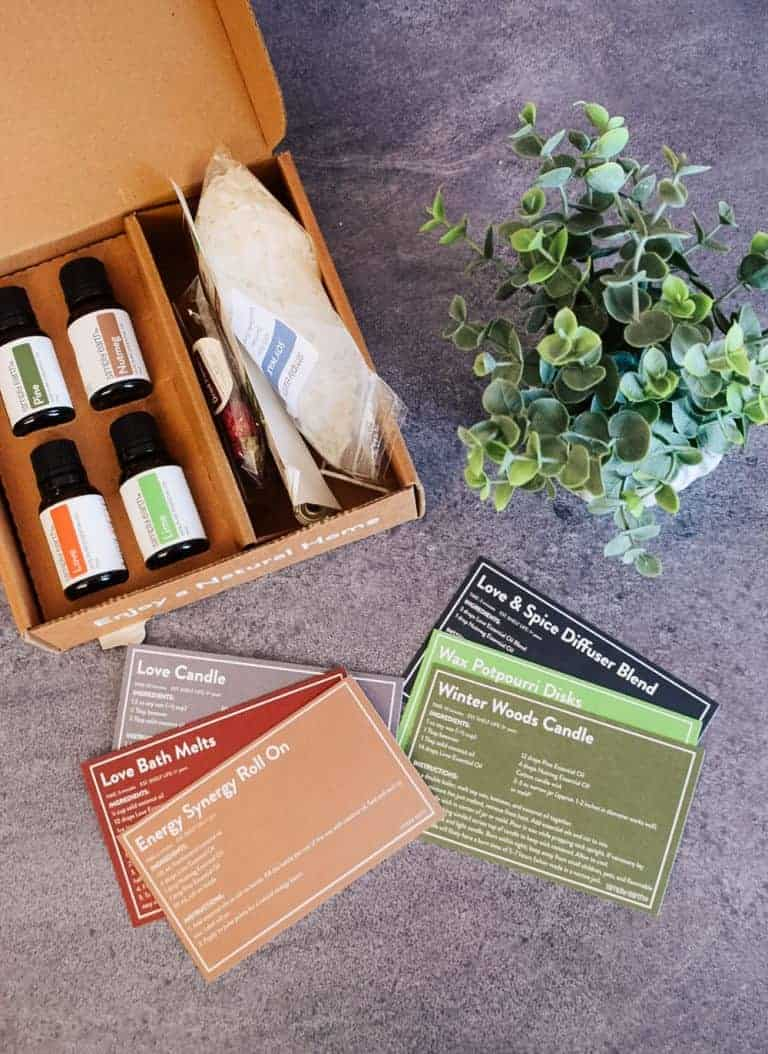 Simply Earth November 2020 Recipe Box Review