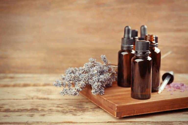 Lavender Essential Oil Uses & Benefits