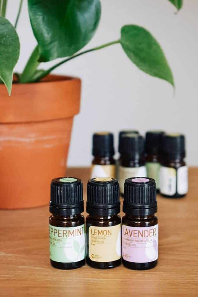 Rocky Mountain essential oils sitting next to plant.