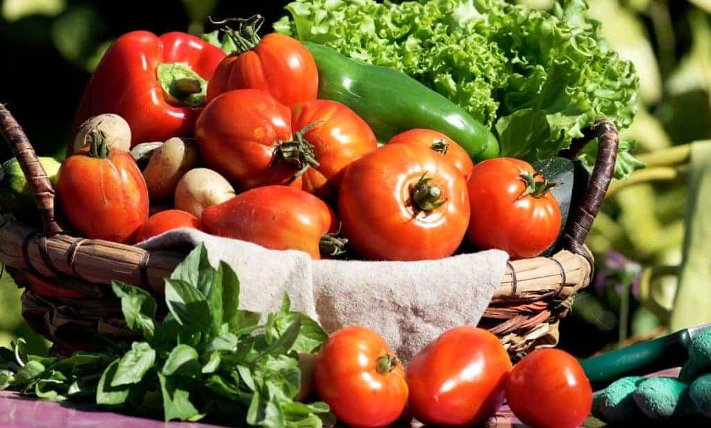 Basket of homegrown vegetables.