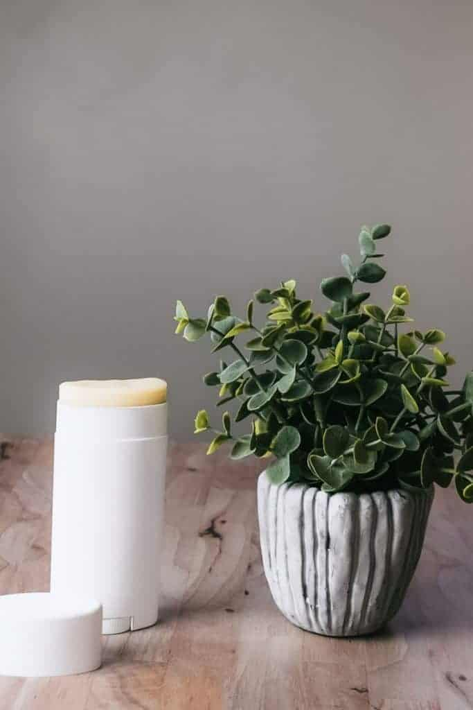 DIY deodorant that works standing to next to plant on table.