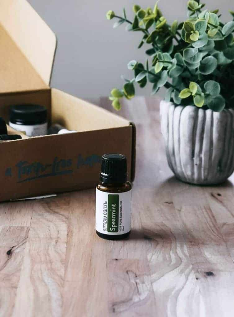 Simply Earth Spearmint essential oil next to Simply Earth July 2021 box and plant.